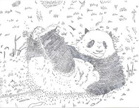 Panda-il